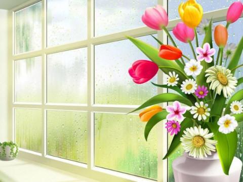 ImageBan.ru - Просмотр изображения: цветы у окна.gif.